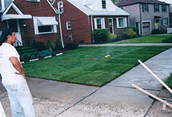 Lawn Sod Installation: Watering of Lawn